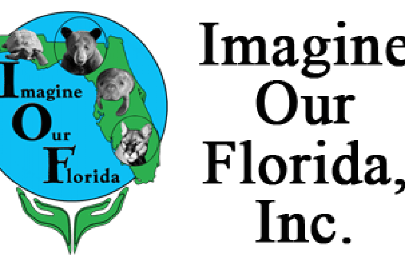 Clearview Florida Map.Imagine Our Florida Inc Maps Apps And More Clearview Geographic